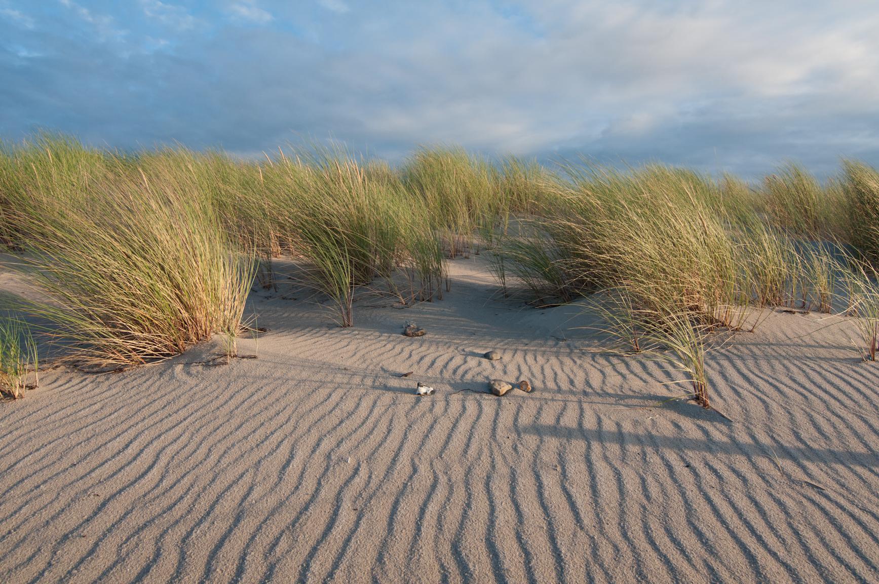 Insel Poel, Dünen am Strand